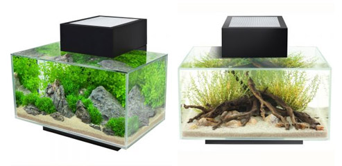ensembles aquariums et aquariums design maganimaux. Black Bedroom Furniture Sets. Home Design Ideas