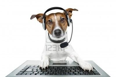 Problèmes d'oreilles du chien