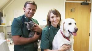 Vers et parasites chez le chien et le chat : à quelle fréquence le protéger ?