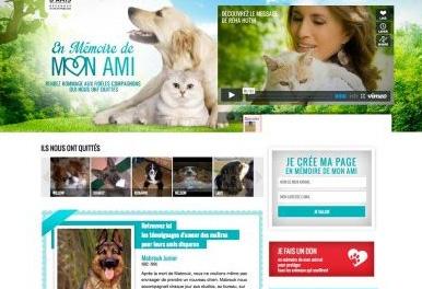 Toussaint : un site dédié à la mémoire des animaux domestiques disparus
