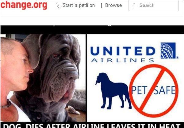 Pétition pour les animaux qui prennent l'avion
