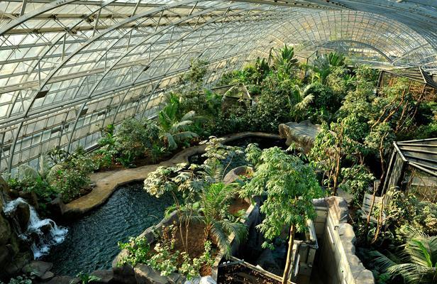Le zoo de Vincennes se prépare à accueillir les animaux
