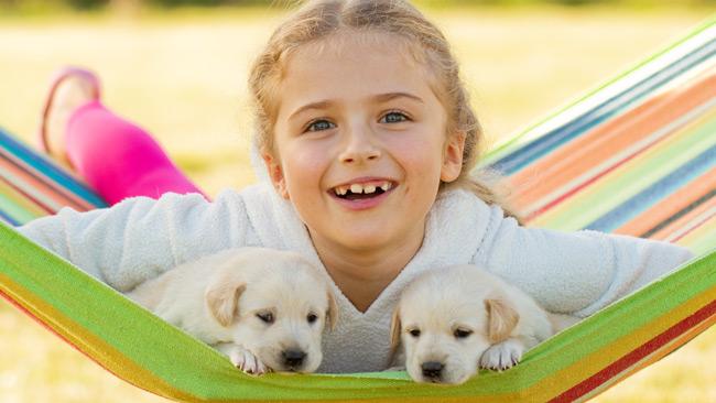 Votre enfant est-il prêt pour un animal domestique?