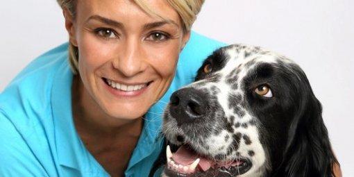 """Natacha Harry, présidente de la SPA : """"Les adoptions d'animaux sont en hausse de 8 %"""""""