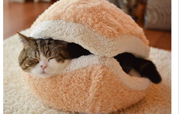 Les Japonais inventent le coussin en forme de burger pour chat