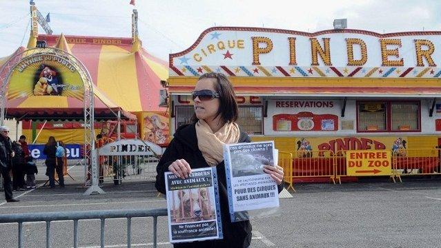"""Manifestation pour """"un cirque sans animaux"""" devant Pinder à Toulouse"""