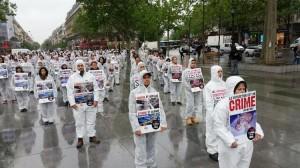 Manifestation à Paris contre la recherche scientifique sur les animaux