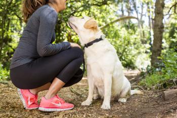 Dans quelle mesure les animaux de compagnie améliorent-ils la santé ?