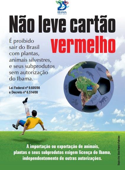 Coupe du monde : ne ramenez pas d'animaux sauvages du Brésil !