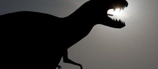 Les dinosaures étaient des animaux à sang tiède