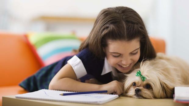J'adopte un animal de compagnie : ce qu'il faut savoir avant de se lancer