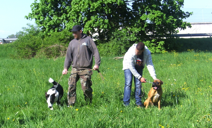 3 000 euros pour aider les propriétaires d'animaux en difficulté