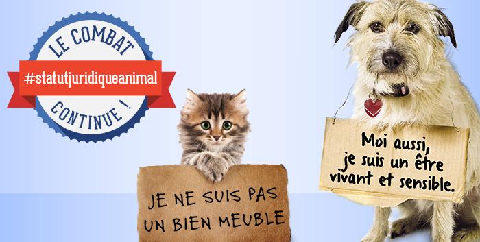 Statut juridique de l'animal : le texte revient à l'Assemblée nationale, restons mobilisés !