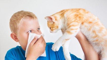 Cohabiter avec un animal auquel on est allergique