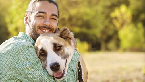 Entre le chien et sa copine, il choisit le chien