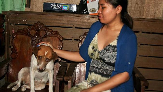 Une femme retrouve son chien un an après le typhon Haiyan (Philippines)