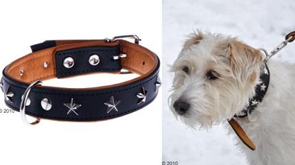 Collier pour chien Heim stars