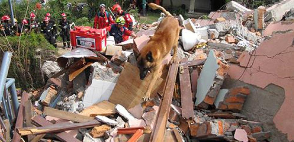 NEPAL. Des chiens au secours des victimes du séisme