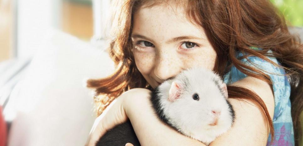 Autisme : lutter contre le stress grâce aux animaux de compagnie