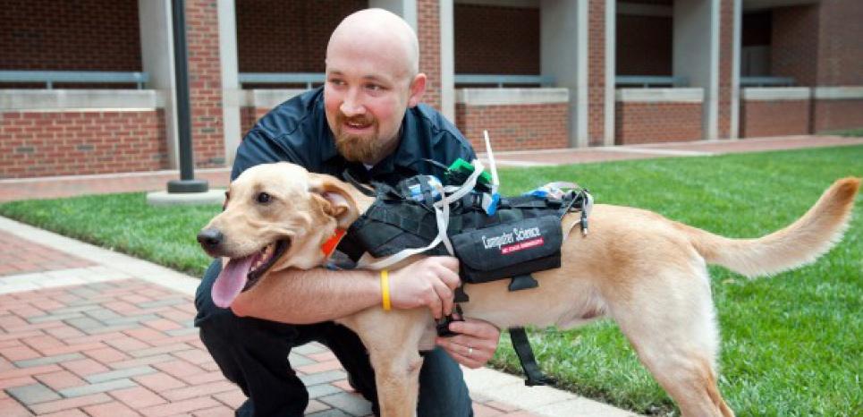 Un harnais connecté pour chien high-tech