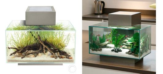 Aquarium Fluval Edge à LED