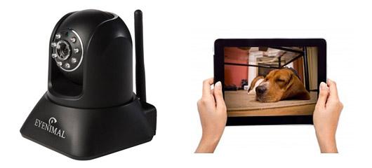 Caméra de surveillance interactive Pet Vision Live