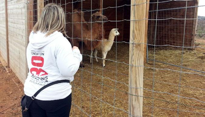 Parc de Saint-Thibéry : 600 animaux secourus par la Fondation 30 Millions d'Amis