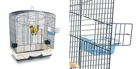 Cage Carmina