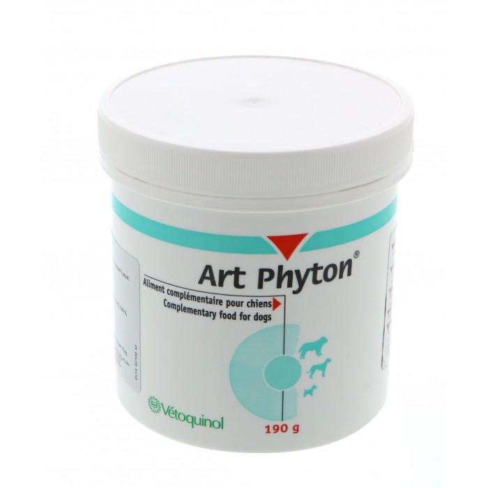 Art Phyton