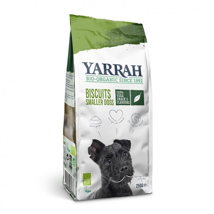 Biscuits vegan pour petit chien