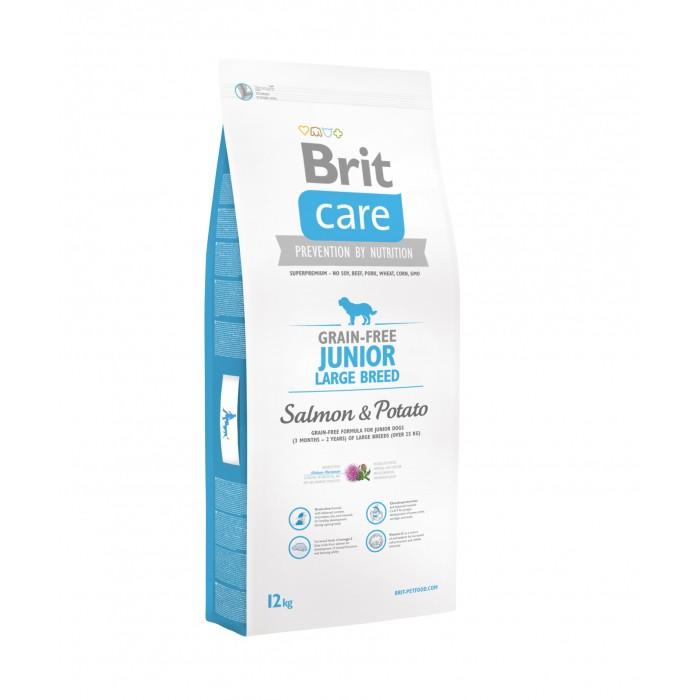 BRIT-CARE