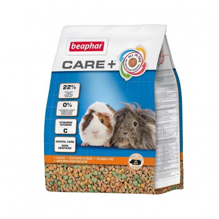 Care + Cobaye