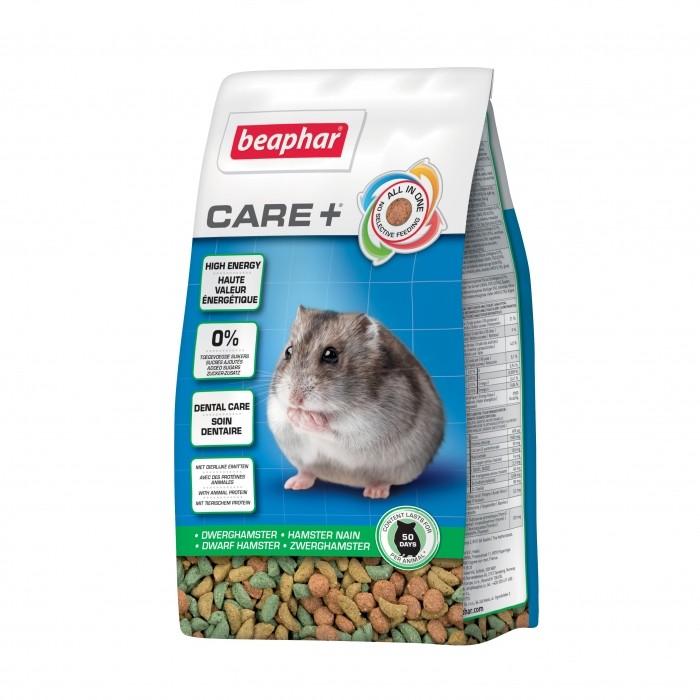 Care + Hamster nain