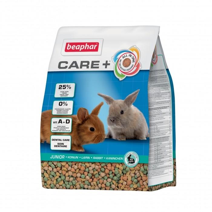 Care + Jeunes lapins