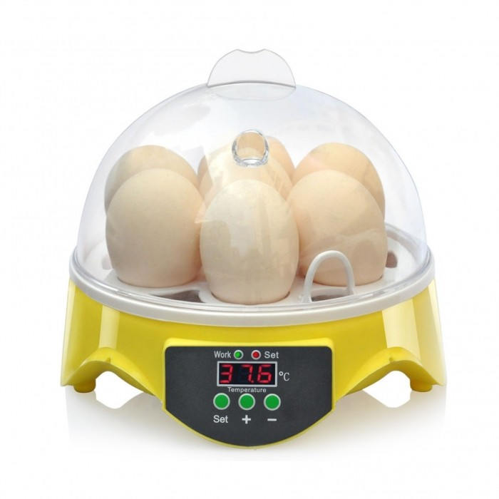 Couveuse manuelle 7 œufs