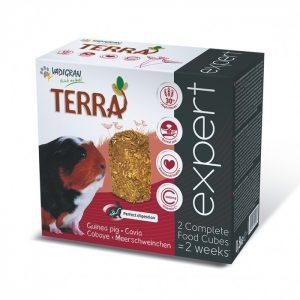 Cubes Terra Expert Cobaye