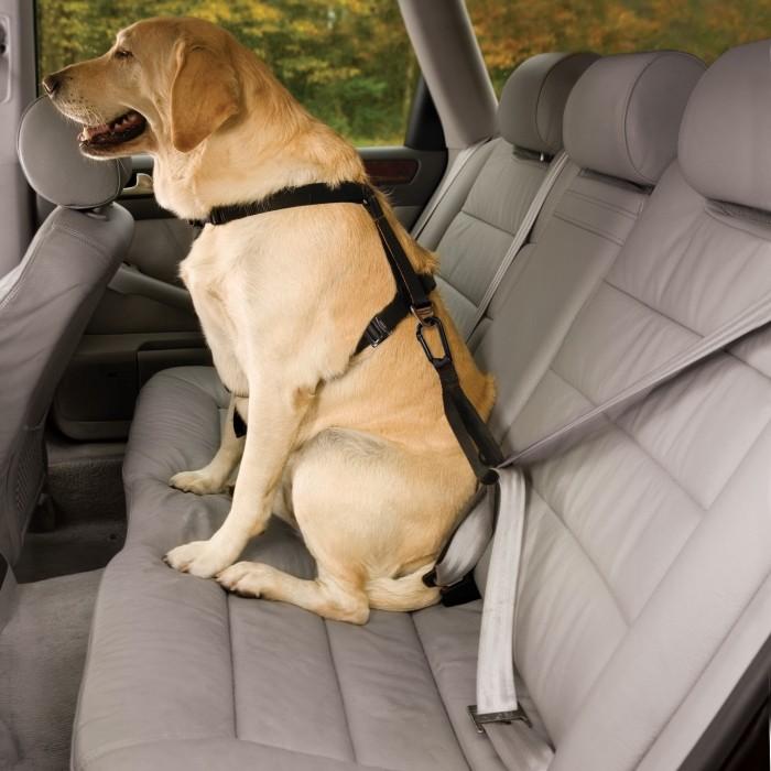 Harnais de sécurité auto Tru-Fit Smart - Noir