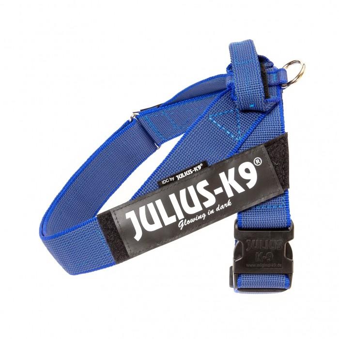 Harnais IDC Belt Color & Gray Bleu