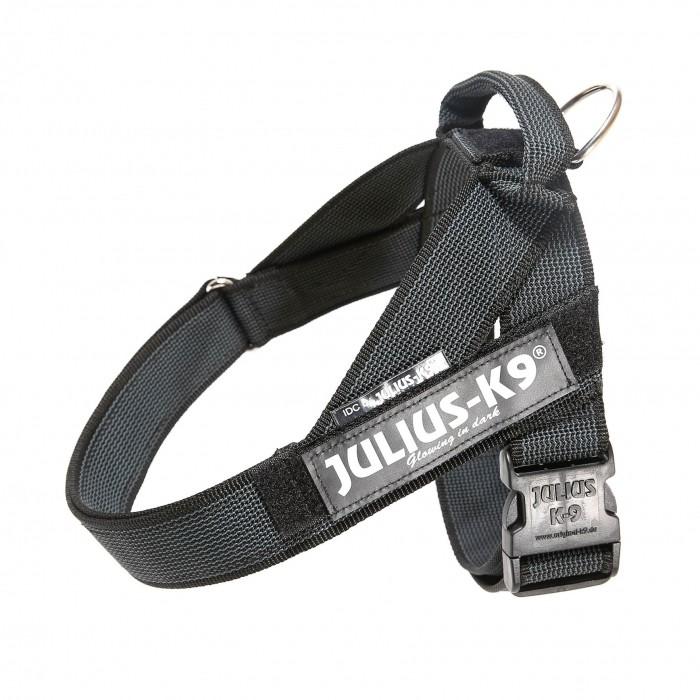 Harnais IDC Belt Color & Gray Noir