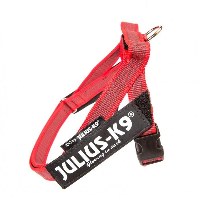 Harnais IDC Belt Color & Gray Rouge