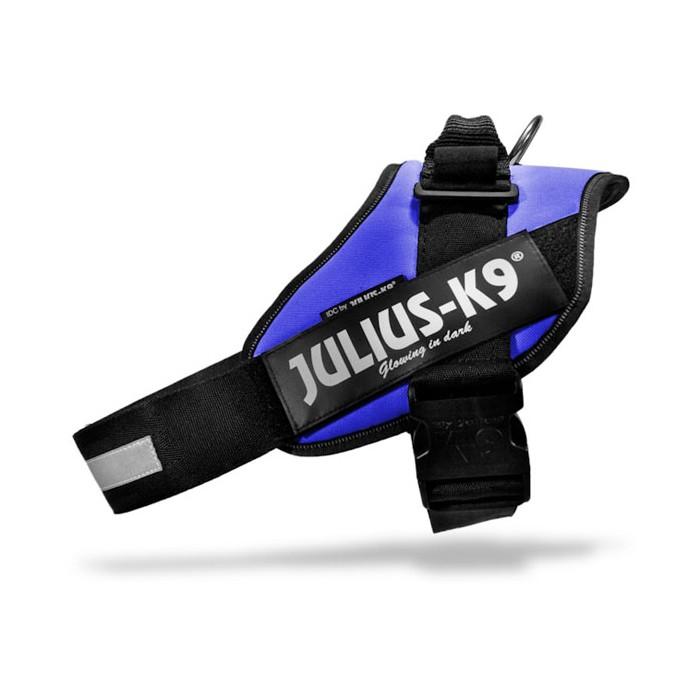 Harnais IDC Power Bleu