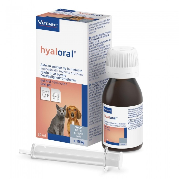 Hyaloral gel buvable