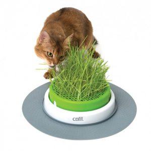 Jardin d'herbe Senses Design