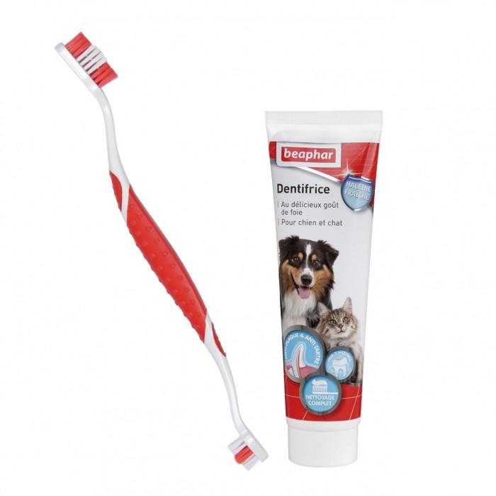 Kit d'hygiène dentaire