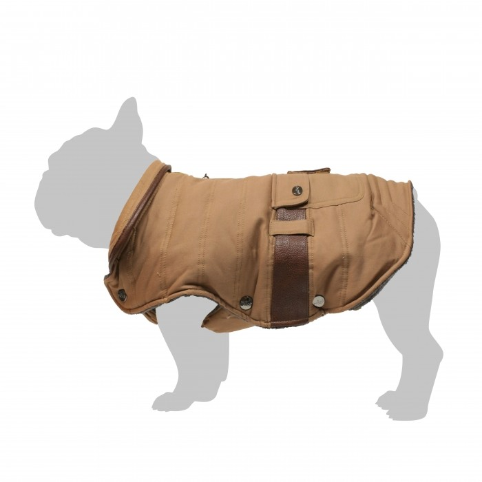 Manteau Tucker - spécial Bulldog