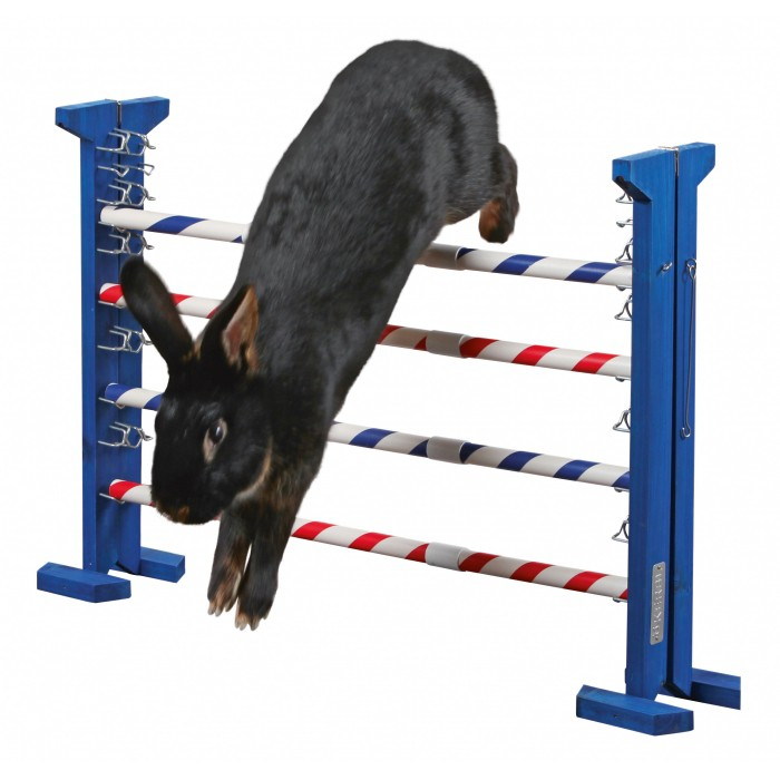 Obstacle combiné Agility
