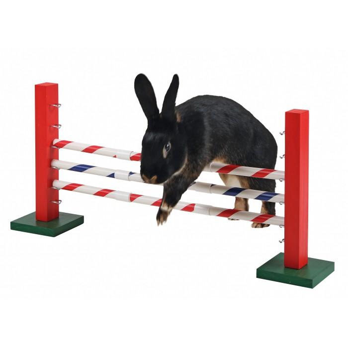 Obstacle en hauteur Agility