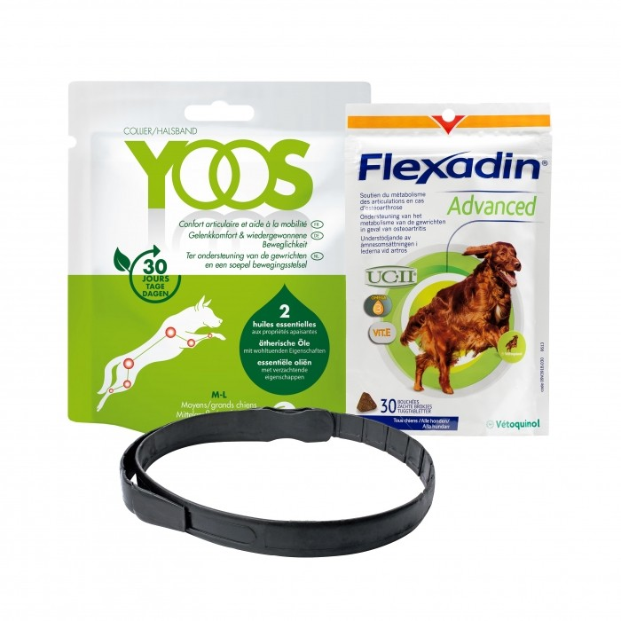 Pack Flexadin advanced et collier Yoos pour le confort articulaire