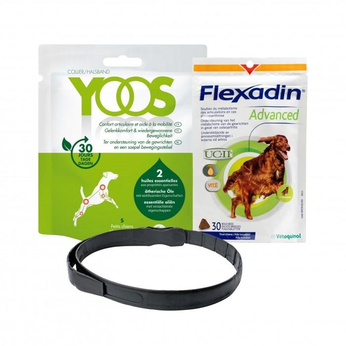 Pack Flexadin advanced et collier Yoos pour le confort articulaire