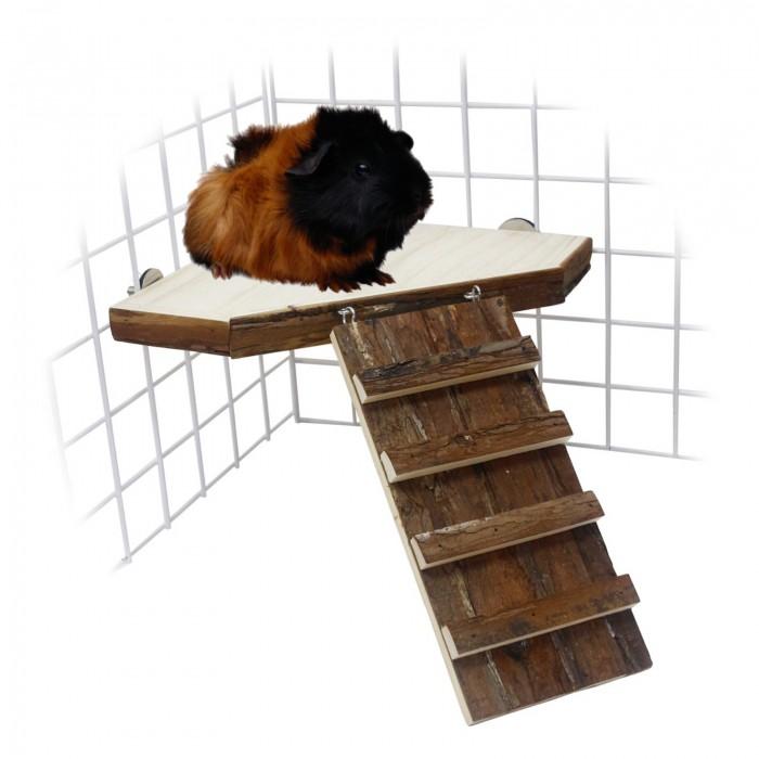 Plateforme et rampe en bois